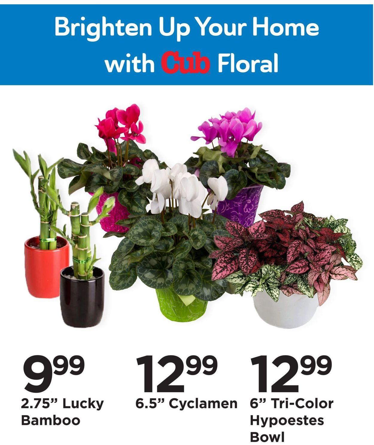 Cub Foods Floral Department 2021 Weekly Ad Circular - valid 01/31-02/06/2021